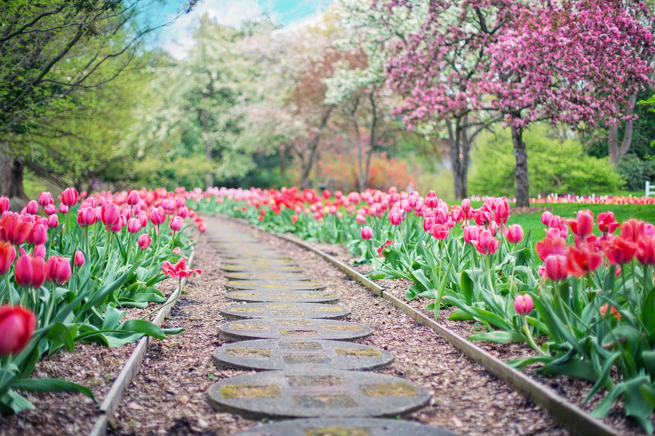 Planning for Spring on your Commercial Property